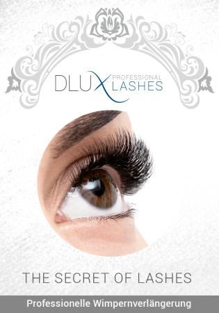 dlux professional lashes poster f rs schaufenster oder f r die wand in a1. Black Bedroom Furniture Sets. Home Design Ideas